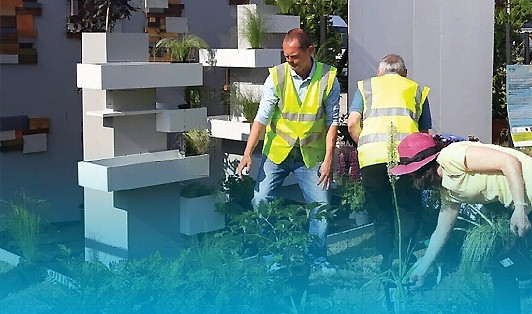 Horticulture (Part-time) Level 4