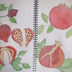 Bunmi-Kolapo--1.-Pomegranate-Sketches.-Paint