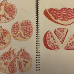 Bunmi-Kolapo--2.-Pomegranate-Sketches.-Water-Colours