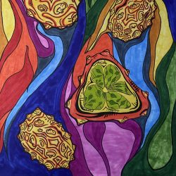 Charles-Imperial-8._Trippy_Fruits,_Illustration_Art_With_Markers
