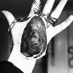 Ciara-Davitt-10-Mouldy-Egg,-Copper,-Chains,-Moss-+-Leaves(1)