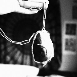 Ciara-Davitt-10-Mouldy-Egg,-Copper,-Chains,-Moss-+-Leaves(2)