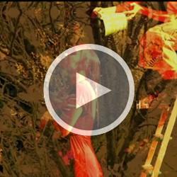Ciara-Davitt-Video 3