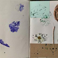Gemma-Rose-Varszegi-3.-Fungus-Studies-And-Nature-Examples