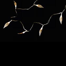 Lee-Barrrett-Woods-10,Leaves-Glowing,Photography