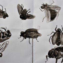 Nodee-Mekhola-1.-_Painting-Of-Dead-Flies_.-Ink_
