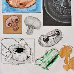 Nodee-Mekhola-11.-_Study-Of-Mushrooms-Pt.-2_-Watercolour,-Coloured-Pencils,-Ink-_-Coffee
