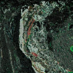 Valeria-Schipschi-7.-Lava-Soil.-Photography