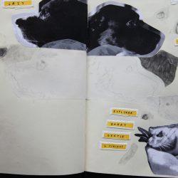 sketch-5428